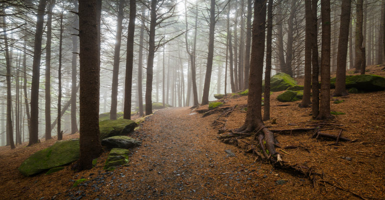 Appalachian-Trail1